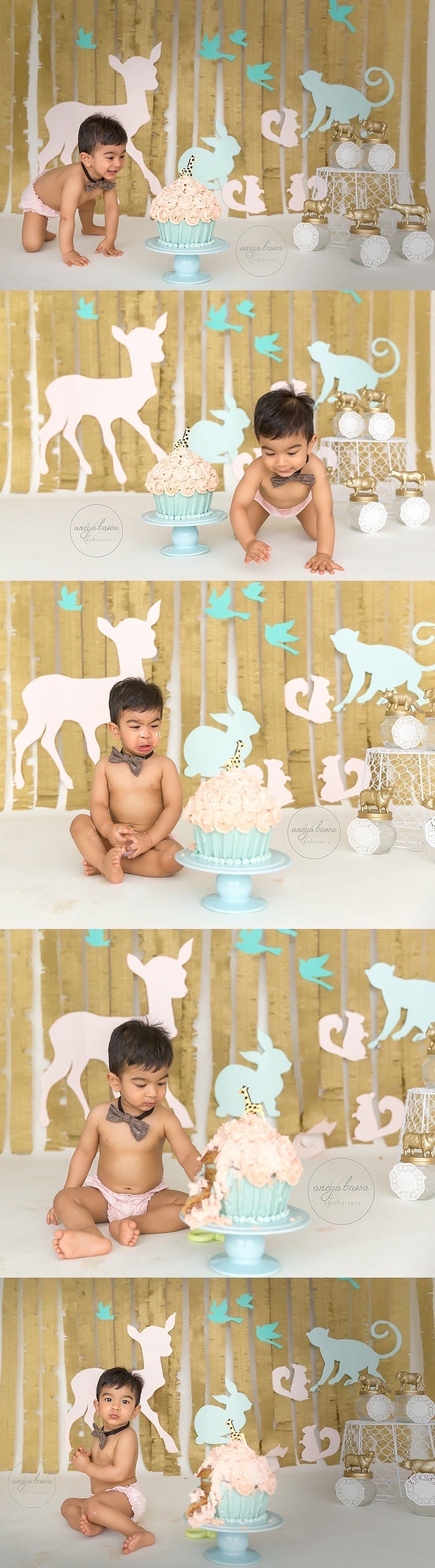 sitter_session_1-year-boy-cake-smash_baby_child