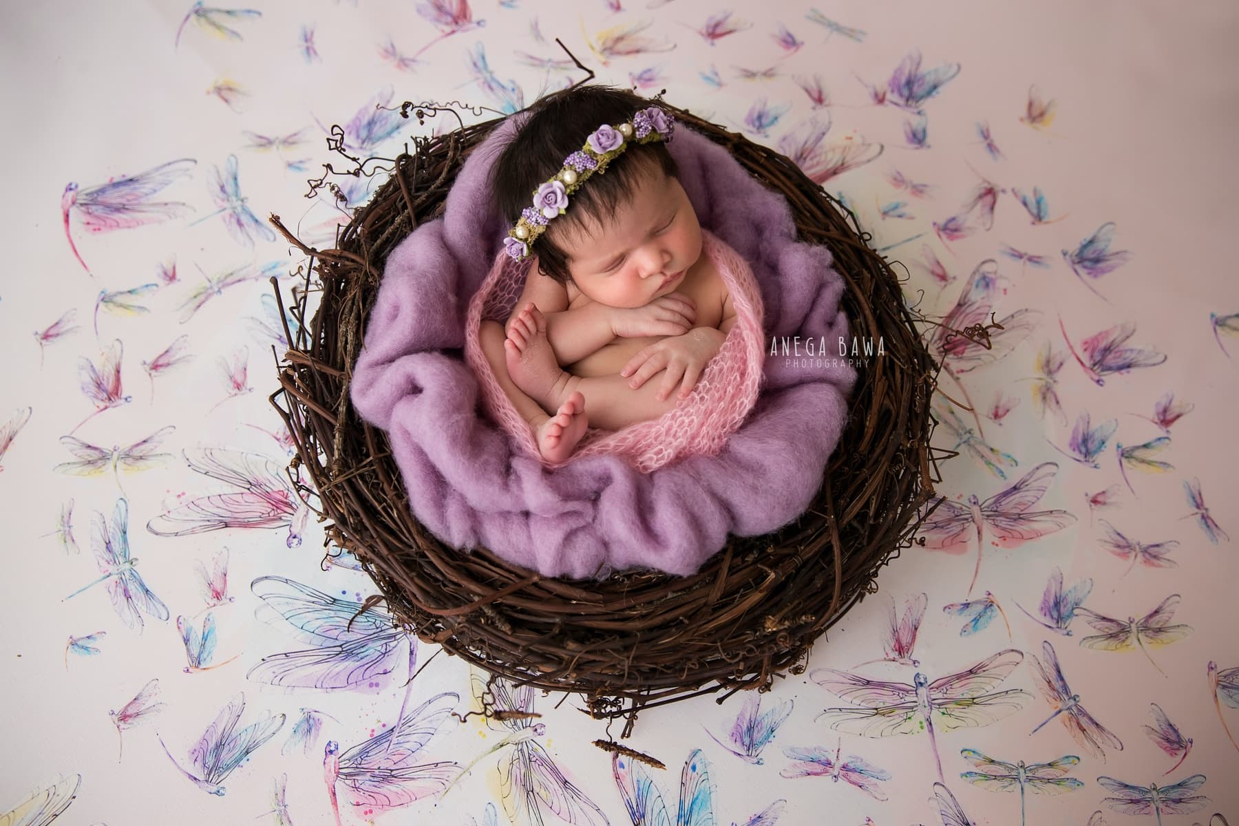colorful dragonfly newborn photography delhi 10 days baby girl photoshoot gurgaon anega bawa