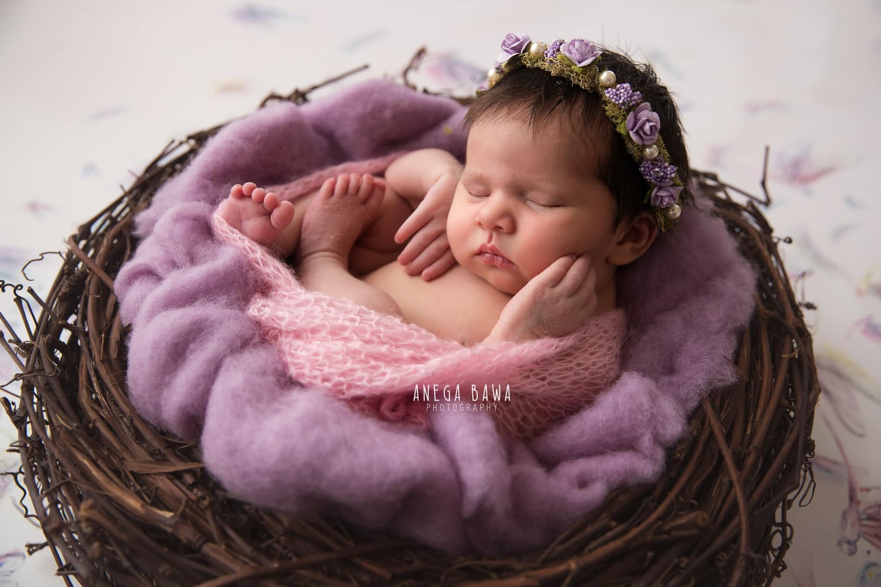 colorful purple dragonfly newborn photography delhi 10 days baby girl photoshoot gurgaon anega bawa