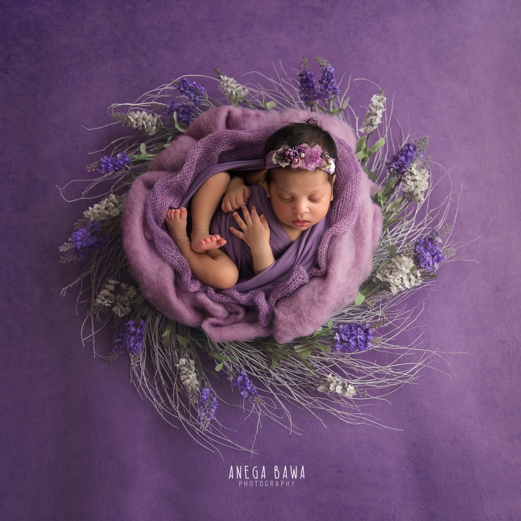lavender newborn photography delhi 14 days baby girl photoshoot gurgaon anega bawa