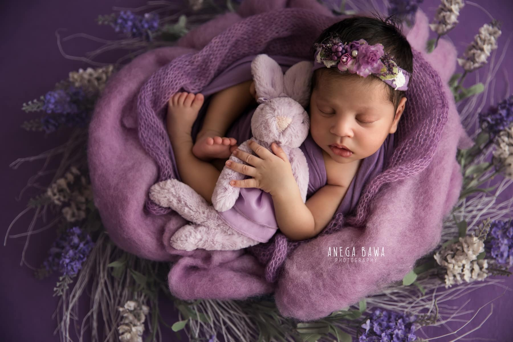 lavender bunny newborn photography delhi 14 days baby girl photoshoot gurgaon anega bawa