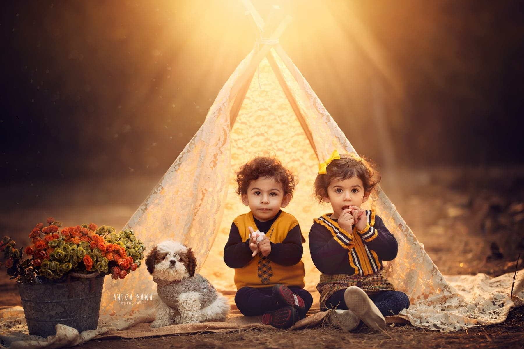 32405-natural-background-brown-tent-pet-1-2-3-years-toddler-twins-outdoor-photo-shoot-delhi-anega-bawa-photography-baby-gurgaon