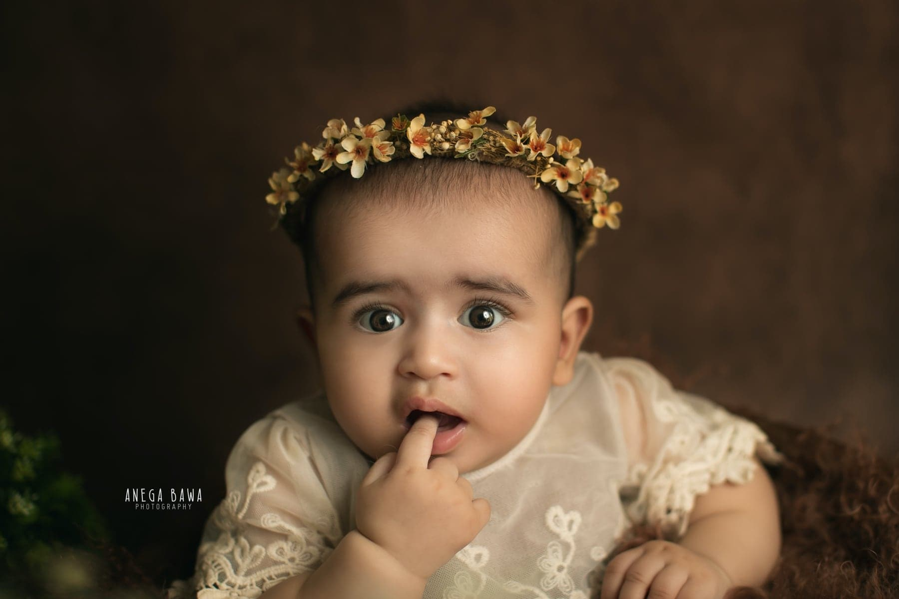 242113-brown-background-green-floral-baby-photography-delhi-5-6-7-months-baby-photoshoot-gurgaon-anega-bawa
